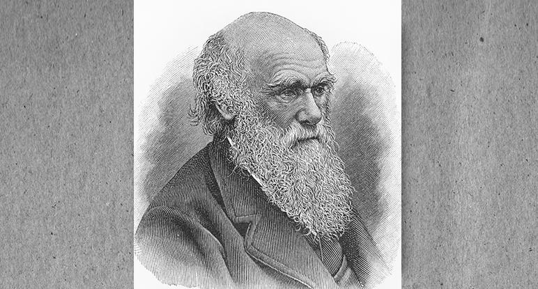 Beschreibung Gedenktag Charles Darwin Tag