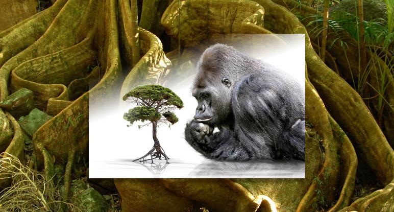 Beschreibung Aktionstag Welttierschutztag