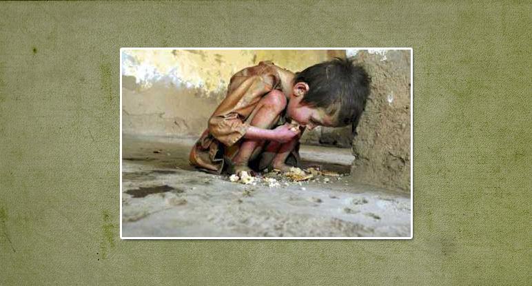 Beschreibung Aktionstag Welternährungstag 2014