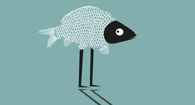 Beschreibung Sternzeichen Fische