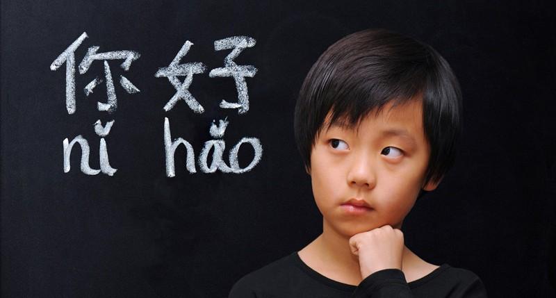 Beschreibung Gedenktag Welttag der chinesischen Sprache