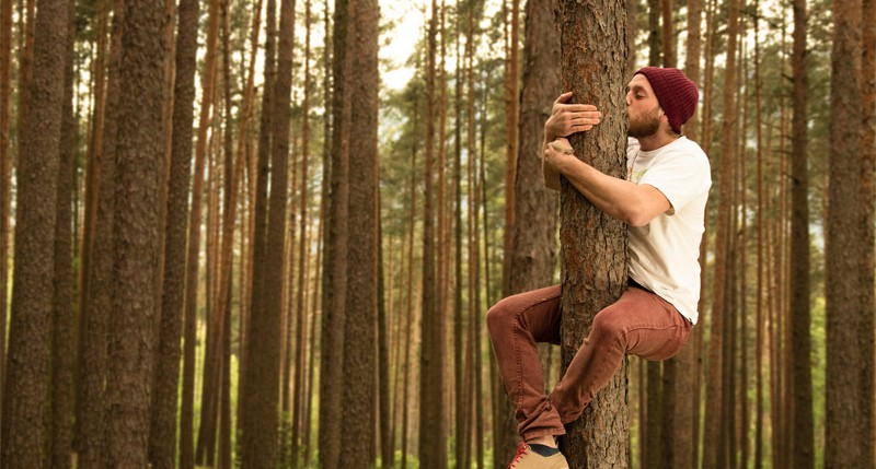 Beschreibung Aktionstag Tag des Baumes