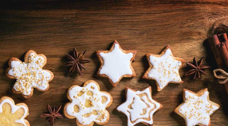Beschreibung Aktiostag Tag des Weihnachtssterns
