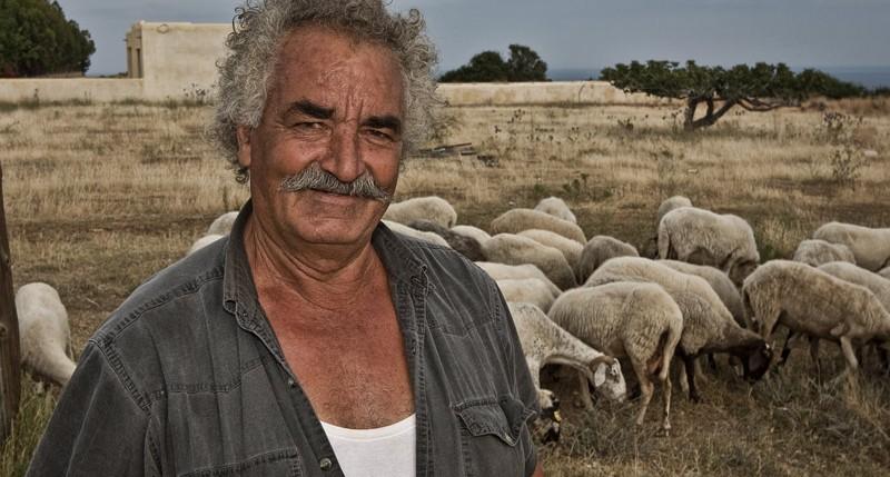 Beschreibung Jahreszeiten Schafskälte 2014