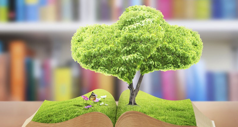Beschreibung Gedenktag Welttag der Wissenschaft für Frieden und Entwicklung 2014