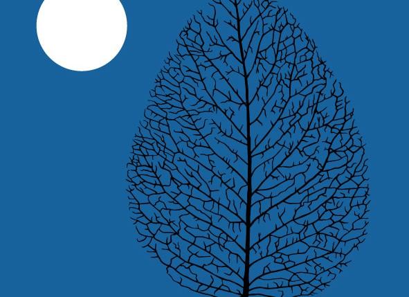 Beschreibung Mondphasen Vollmond 2015