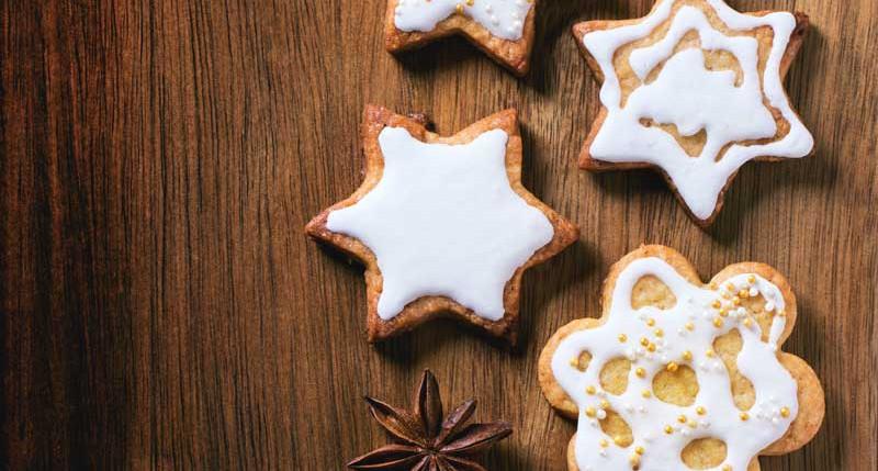 Beschreibung Aktiostag Tag des Weihnachtssterns 2015