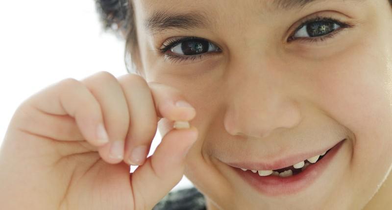 Beschreibung Gedenktag Tag der Zahnfee 2016