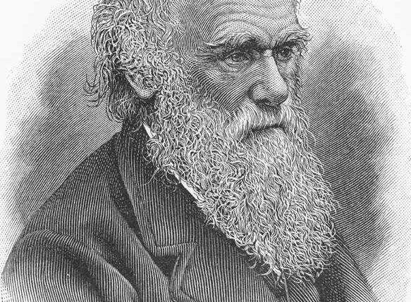Am 12. Februar ist Darwin-Tag. Weitere Informationen und Hintergründe zum Gedenktag Darwin-Tag findest Du hier.