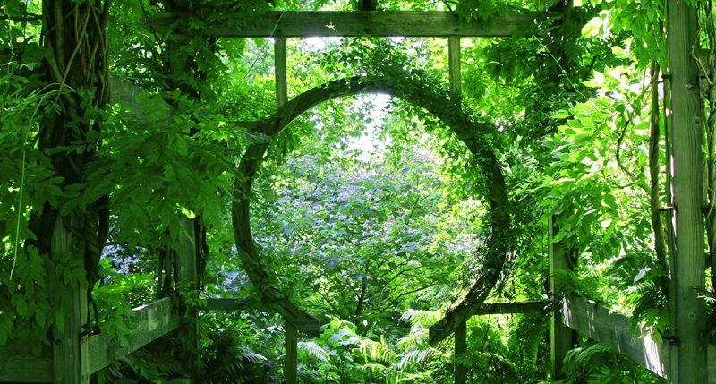 Am Sonntag im Juni ist Tag des Gartens. Weitere Informationen und Hintergründe zum Aktionstag des Gartens bekannt auch als Tag des Gartens findest Du hier
