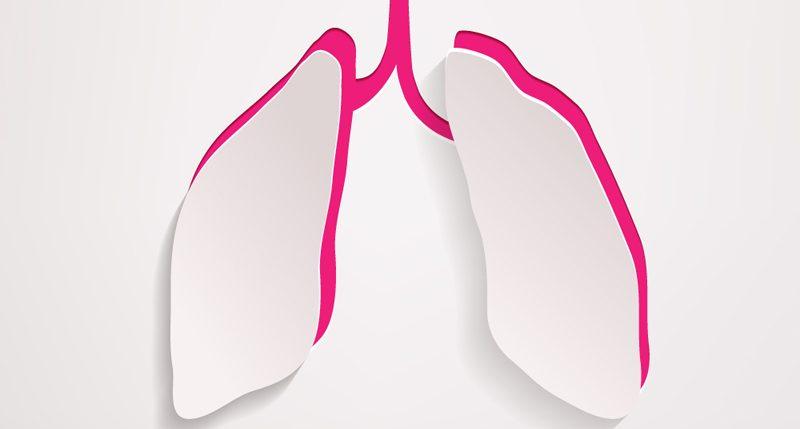 Am ersten Dienstag im Mai ist Welt-Asthma-Tag. Weitere Informationen und Hintergründe zum Aktionstag Welt-Asthma-Tag findest Du hier.