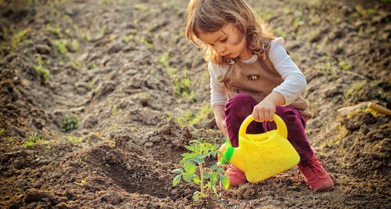 Am 5. Juni ist Tag der Umwelt. Weitere Informationen und Hintergründe zum Welttag der Umwelt findest Du hier.