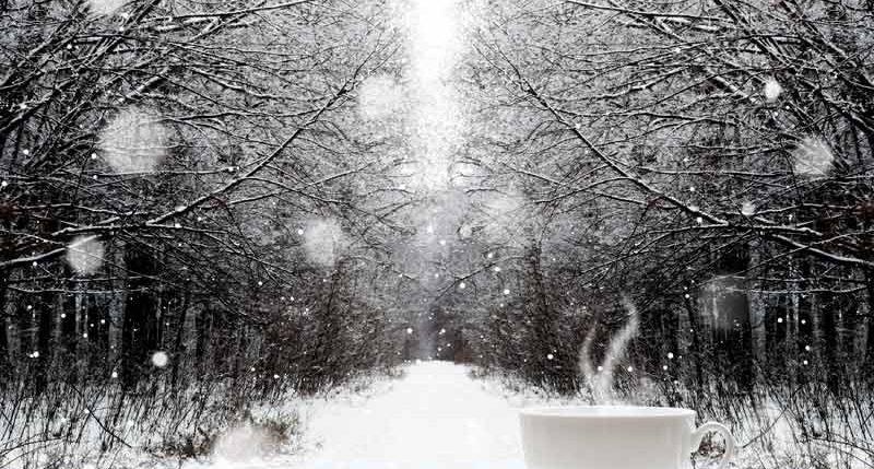Am 21. Dezember ist Winteranfang. Weitere Informationen und Hintergründe zum Winteranfang findest Du hier.